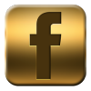 Image result for facebook gold logo